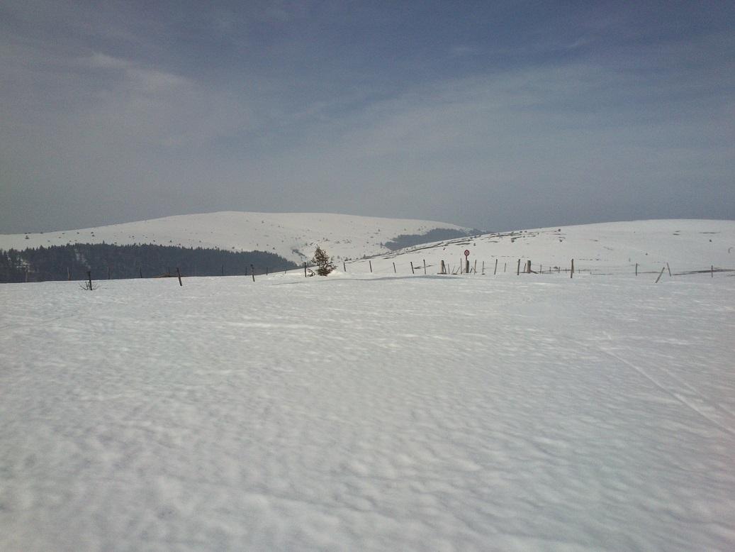 Session neige  we 15-16/03 encore faisable? 04
